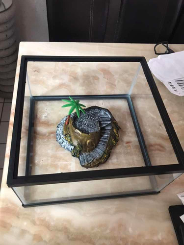 tortuguero tortuga tortuga grande 40cm ancho x40cm largo x20