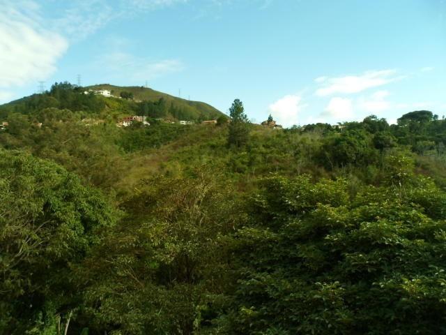 townhouses en venta altos de la trinidad 20-7455