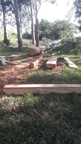 trabajos en madera, vamos hasta su establecimiento!