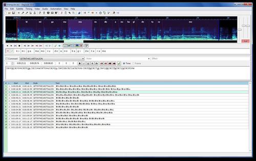 traducción y subtitulado de videos
