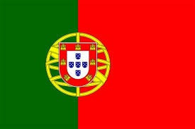 traducciones portugues ingles tecnicas, académico, comercial