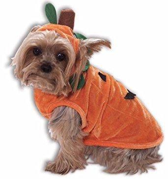 traje de la calabaza de halloween del perro
