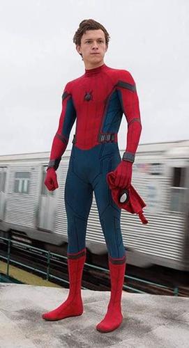 traje disfraz spiderman homecoming adulto cosplay spider man