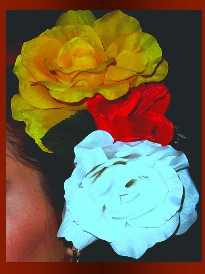 6a60d55af traje tipico de veracruz lujo- jarocha niña 9 a 12 años. Cargando zoom.