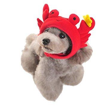 trajes,disfraz para perro bagirl party animal pet sombre..
