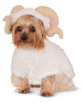 trajes,disfraz para perro los rubíes de la empresa de ve..