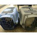 tramites viaje internacional  mascotas consultas