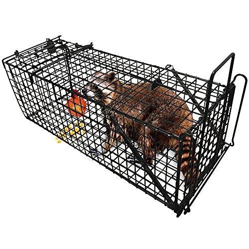 trampa de animales vivos profesional humana 28  x12  x12...
