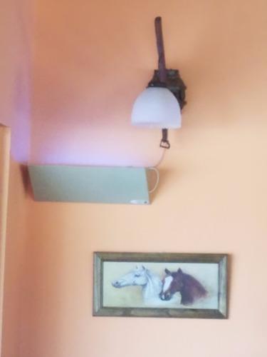 trampa de luz atrapa moscas. ecológica