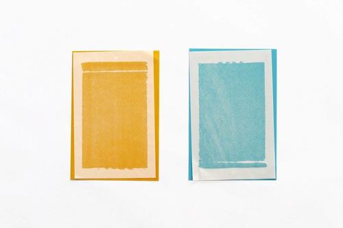 trampa insectos 2 unidades amarilla + azul 20x14cm