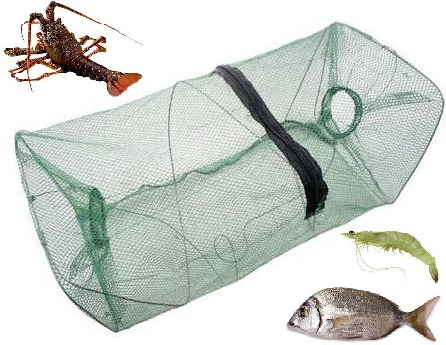 trampa pesca para langosta cangrejo camaron mojarra+ navaja