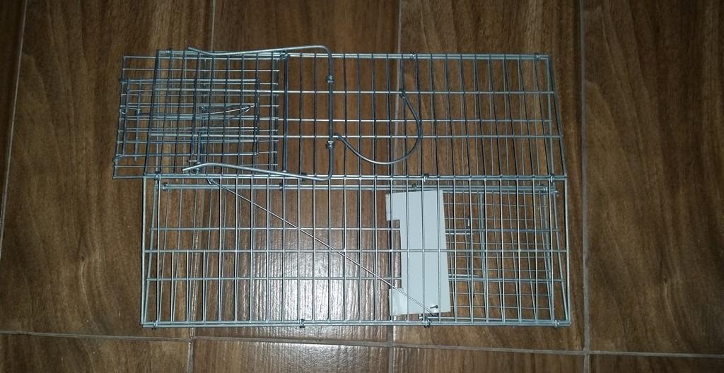 Trampas para ratas s 25 00 en mercado libre - Trampas para ratones y ratas ...