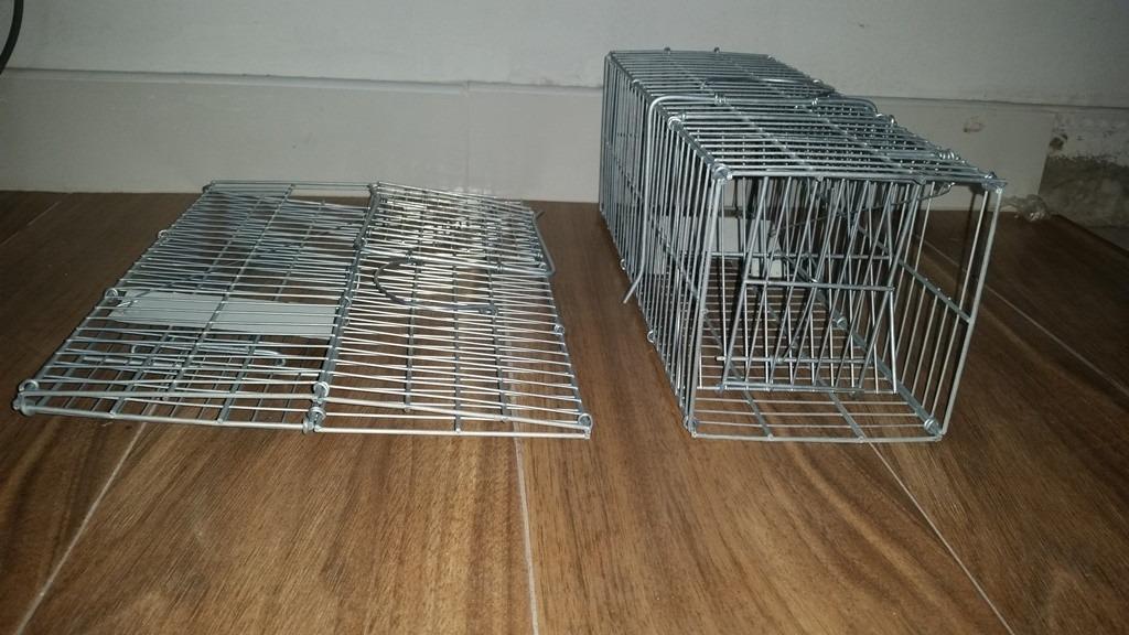 Trampas Para Cazar Ratas. Cool Trampas Para Ratones Y Ratas Como ...