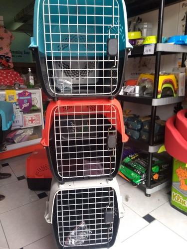 transportador perro viaje