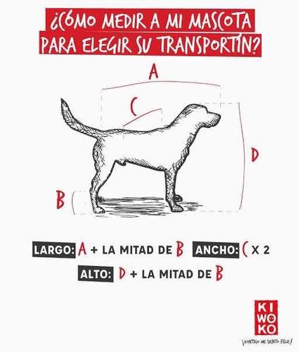 transportador perros viaje