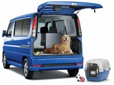 transportamos mascotas larga a distancia buin, paine,melipil