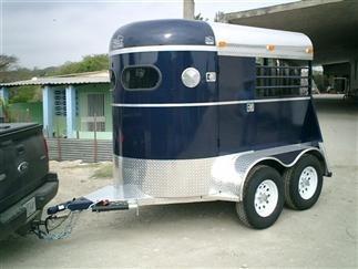 transporte de caballos, equinos, traslados