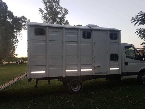 transporte equino