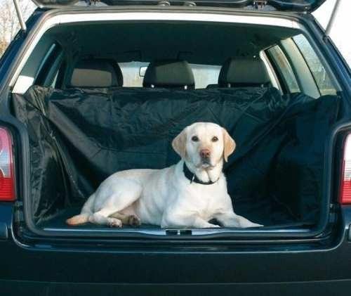transporte para mascotas perros y gatos