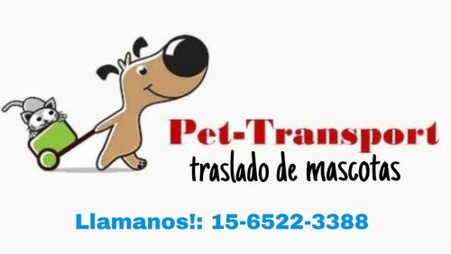 traslado de mascotas pet transport