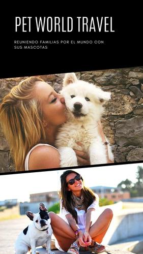 traslado internacional mascotas . pet world travel