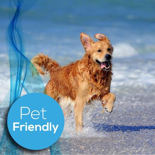 traslados puerta a puerta a la costa con sus mascotas!!