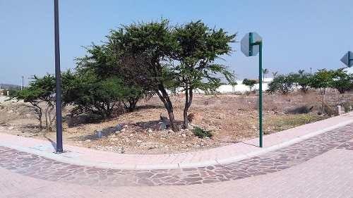 traspaso de terreno ubicado en esquina en ciudad maderas