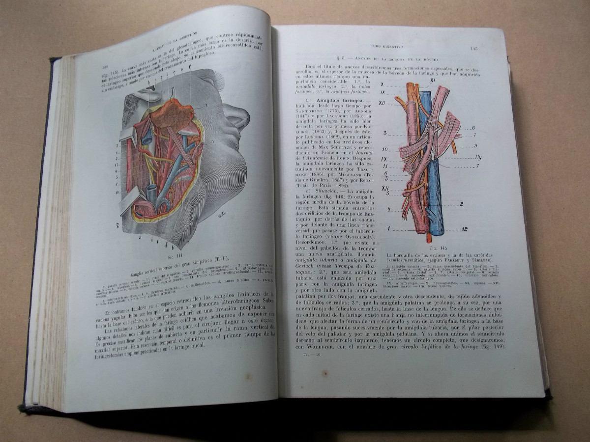 Anatomia Humana latarjet 4ta edicion Tomo i Pdf