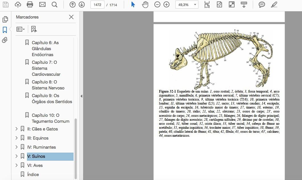 Fantástico Anatomía Y Fisiología Libro De Colorear El Capítulo 6 ...