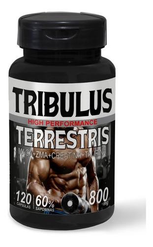 tribulus terrestris 800mg 60% saponinas c/ maca zma  kit c/6