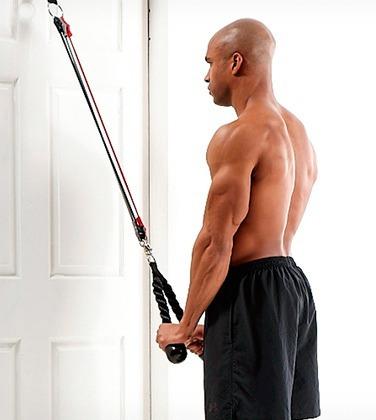 triceps crunch everlast trabaja triceps espalda abdominales