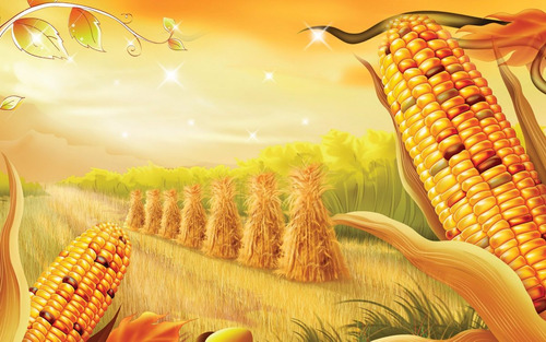 trilladora de maiz  ,somos fabricantes maquinas agricolas