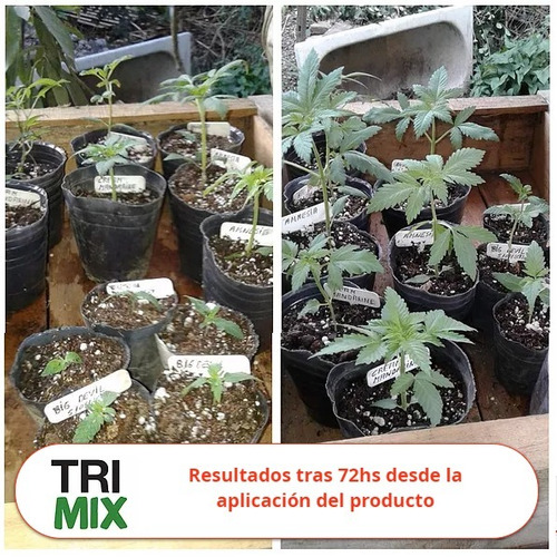 trimix treemix pro 500ml bioestimulante tricodermas + regalo!
