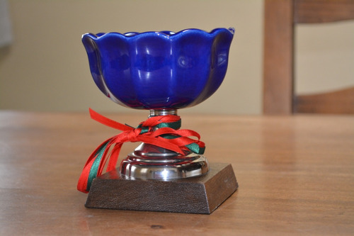 trofeo copa premio golf futbol voley hockey etc