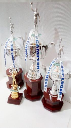 trofeos voleibol tercia copas