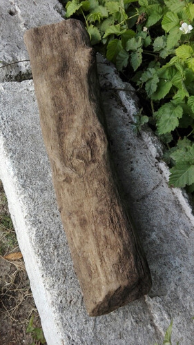 troncos para acuarios