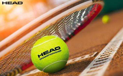 tubo head championship x3 balls pelotas tenis all court