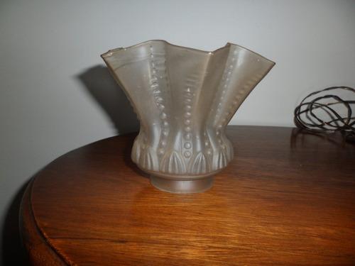 tulipa antigua