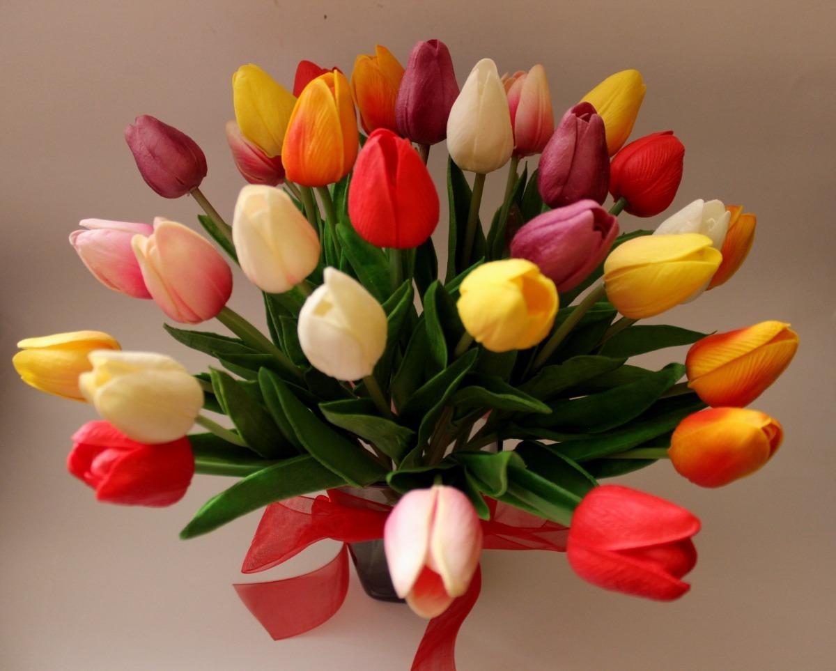 Fotos de flores tulipanes 18