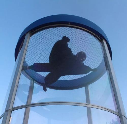 túnel de vento vertical - simulador de paraquedismo - alugue