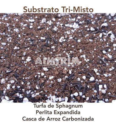turfa, perlita e cac - substrato misto - suculentas - 10 l