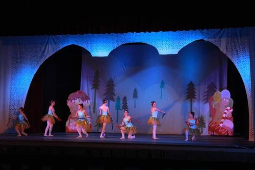 tutu adulto ballet