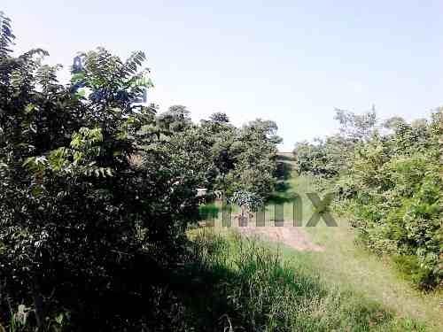 tuxpan ver terrenos de venta. ubicado en la col. fidel herrera beltran en la ciudad y puerto de tuxpan, veracruz, cuenta con 400 m² con forma cuadrada tiene 20 metros de frente por 20 metros de fondo