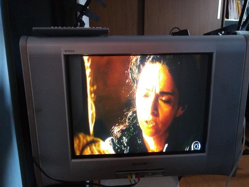 Tv Tela Plana 20' Sony Wega Trinitron