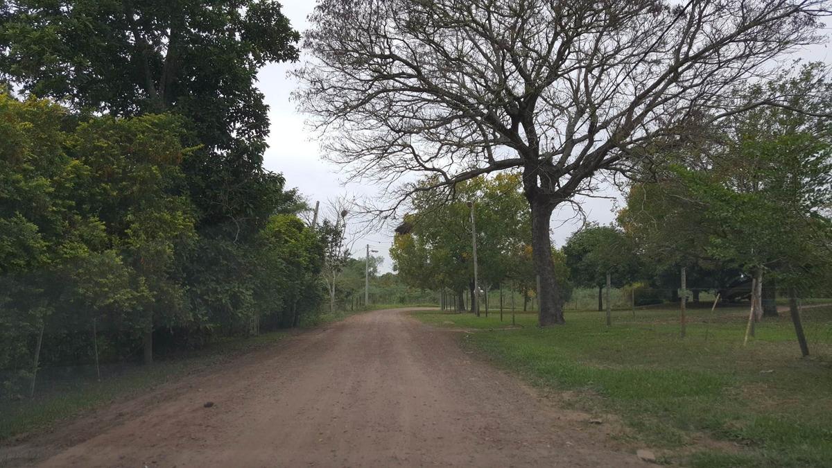 último terreno a 5´shopping centenario vivero municipal. recotizado!