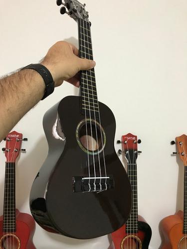 ukeleles acusticos concierto+forro+pua+metodo+envio