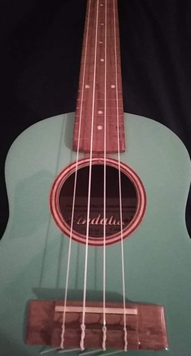 ukulele concierto andalucia