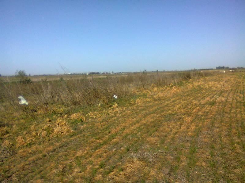 ult. precio! a mtrs. de la autopista rosario - santa fe. campo de 7 has (divisibles) en san lorenzo