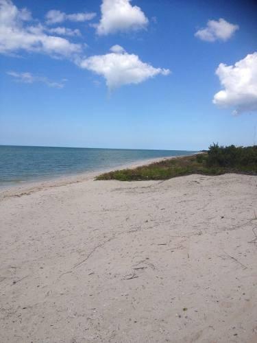 ultimos terrenos a la playa. espectacular vista al mar,