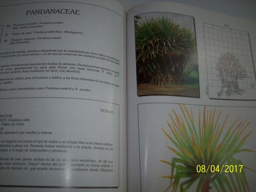 una guía del las plantas ornamentales del valle sartenejas